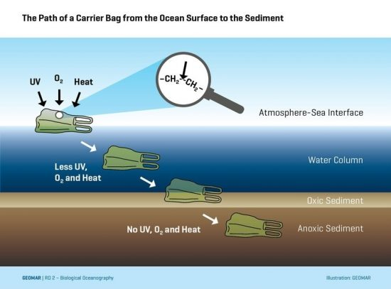 How A Plastic Bag From The Sea Surface Ends Up In Seabed Sediment C Geomar