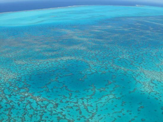 2015_06_30_Klimawandel_Coral_reef_c_D_Laffoley