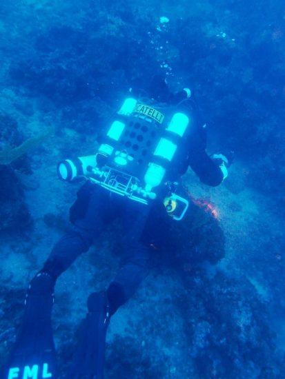 FML - Dive 14