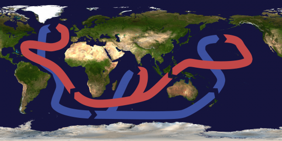 Thermohaline_circulation_wikimedia_bisbane