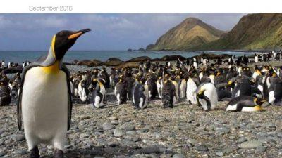 2016_09_08_IUCN_Report_BIld