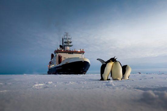 2016_10_28_Antarktis_Schutzgebiet_1