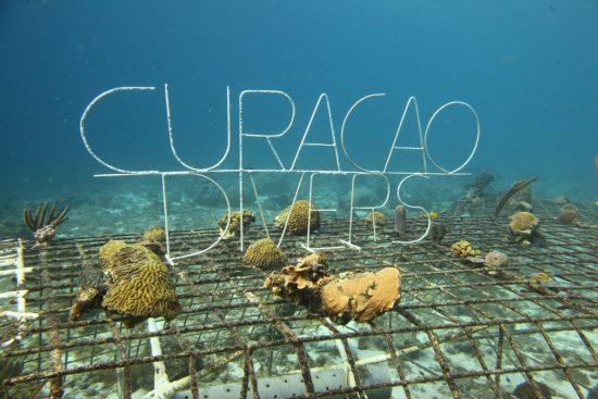 2017_02_26_Biorock Projekt Curacao_pics_11