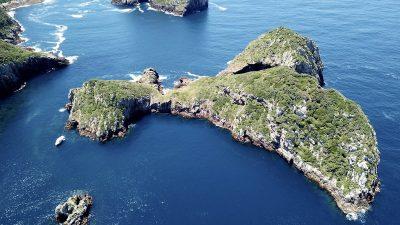 Inseln der Poor Knights Islands, New Zealand - Neuseeland