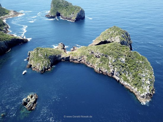 Inseln der Poor Knights Islands, New Zealand - Neuseeland