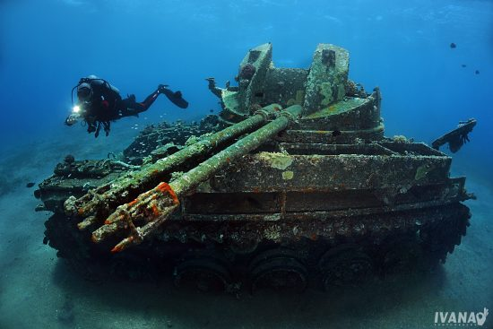 01 Tank  photo by Ivana OK
