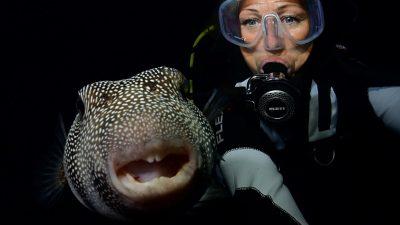 55 Selfie Ivana OK (Large)