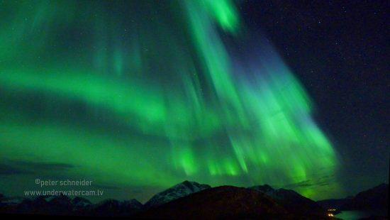aurora01wm