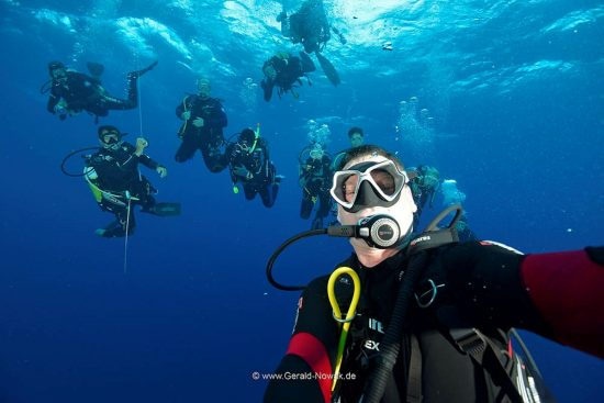 Diving in Cocos Island