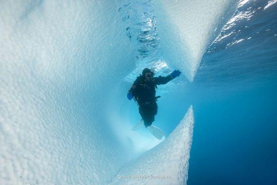 Eisbergtauchen in der Antarktis, Antarktika Expedition 2018