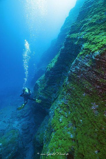 Küstentauchgang an den Höhlen, Norberto Diver, Horta, Faial, A