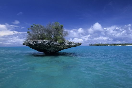 """mushroom-shaped islands of honeycombed pinnacles of limestone are known locally as """"champignon"""", inside the lagoon, Aldabra Atoll, Natural World Heritage Site, Seychelles, Indian Ocean"""